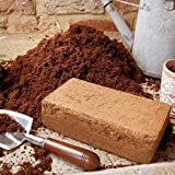Wormcity WCCB1 - Bloque de fibra de coco comprimida para compost, plantones o estrato de lombrices o caracoles