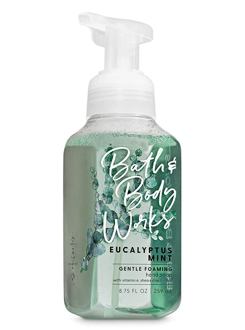 おとうさん時刻表ハブブバス&ボディワークス ユーカリミント ジェントル フォーミング ハンドソープ Eucalyptus Mint Gentle Foaming Hand Soap