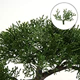 Zoom IMG-2 bonsai artificiale 22 9 cm