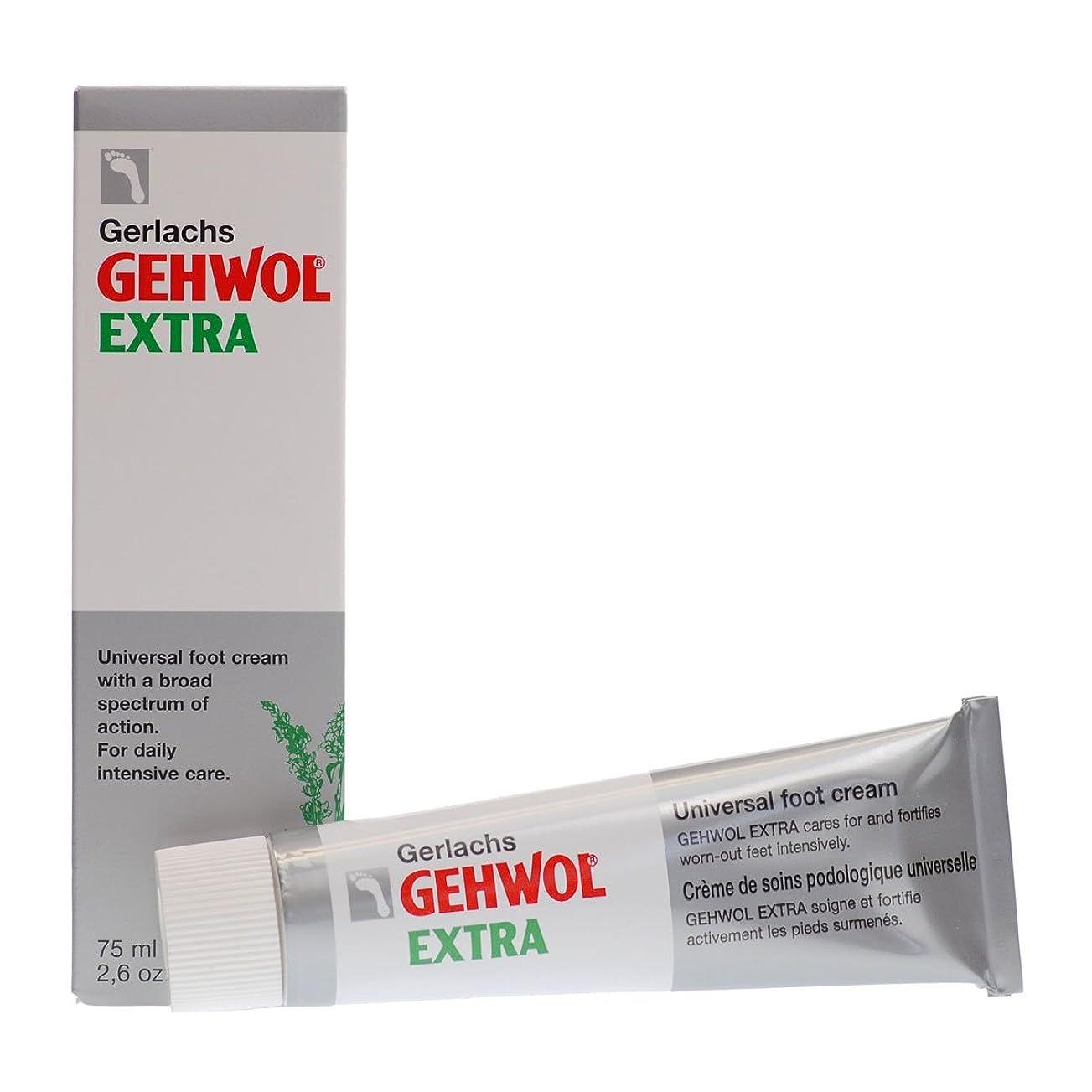 雪だるまを作るりんご消費Gehwol Extra Intensive Care Foot Cream 75ml [並行輸入品]