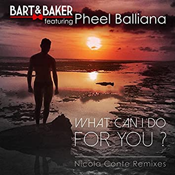 What Can I Do for You ? (feat. Pheel Balliana)