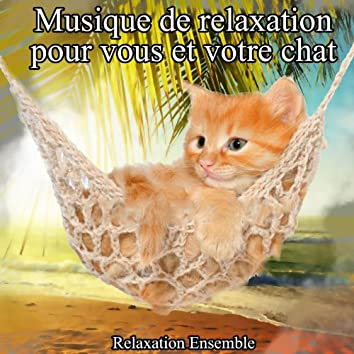 Musique de relaxation pour vous et votre chat