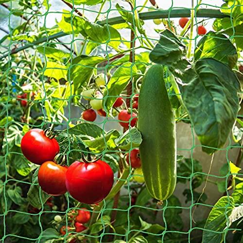 Shengruili Pflanzennetz, 1.8m x1.8m Stütznetz Garten,Ranknetz Rankhilfen,Garten Gewächshaus Gurken Tomaten,Rankhilfen für Kletterpflanzen,Gewächshaus Zubehör,Gartennetz