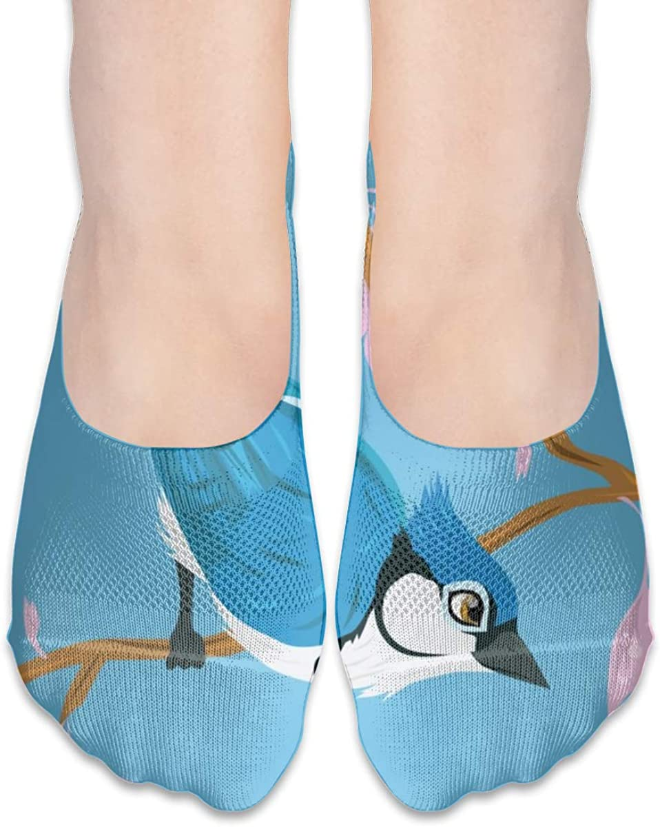 Personalized No Show Socks With Graphic Blue Jay Bird Print For Women Men