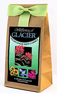 Glacier National Park Wildflowers - Seed Mix - a Collection of Twelve annuals and perennials - Enjoy The Natural Beauty of Glacier Flowers in Your own Home Garden