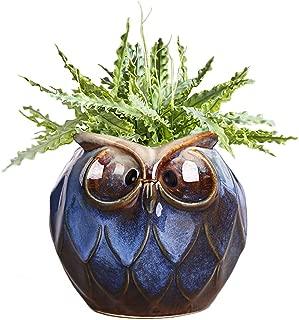 GeLive Blue Owl Ceramic Succulent Planter Animal Plant Pot Tabletop Decoration Vase Window Box (Blue Large Owl)