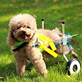 Adjustable Dog Pet Wheelchair, Hind Legs Rehabilitation, 7 Sizes (0-110lbs), Dog Cart,Wheels (1.XXS Size: Hip Height: 6.3'-9.5', Width:3.5'-6')