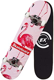 THMEX Pro Skateboard Standard Skateboards Cruiser Complete Canadian Maple 8 Layers Double Kick Concave Skate Boards