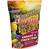 F.M. Brown's Tropical Carnival Gourmet Canary and Finch Food, 1.5-lb Bag - Vitamin-Nutrient Fortified Daily Diet with Fruits, Veggies, Grains, Seeds, Herbs, and Flowers