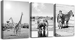 animal Black and white landscape Canvas Prints Bedroom Wall Art for bathroom Wall decor inspirational Artworks wall decorations for living room,3 piece Home decor giraffe Elephant wall paintings