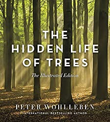 Image: The Hidden Life of Trees: The Illustrated Edition | Hardcover: 176 pages | by Peter Wohlleben (Author), Jane Billinghurst (Translator). Publisher: Greystone Books (August 28, 2018)