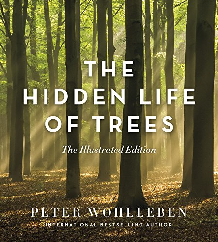 Hidden Life Of Trees Illustrated Version: The Illustrated Edition