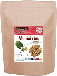 Wilderness Poets White Mulberries - Organic Raw Dried Mulberries, 2 lb (32 oz)