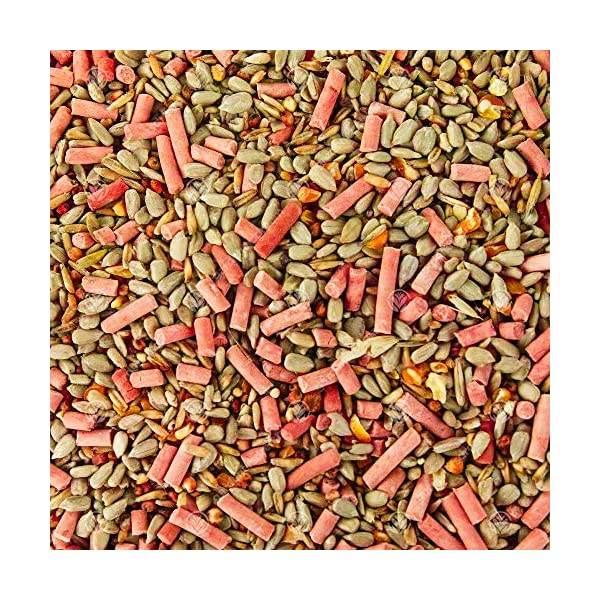 SQUAWK Premium Wild Bird Food | No Mess Garden Birds Feed Mix | Contains Berry Suet Pellets and Sunflower Hearts and Kibbled Peanuts | Enhanced Seed Mixture | High Energy Balanced Recipe