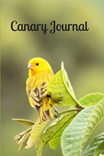 Canary Journal