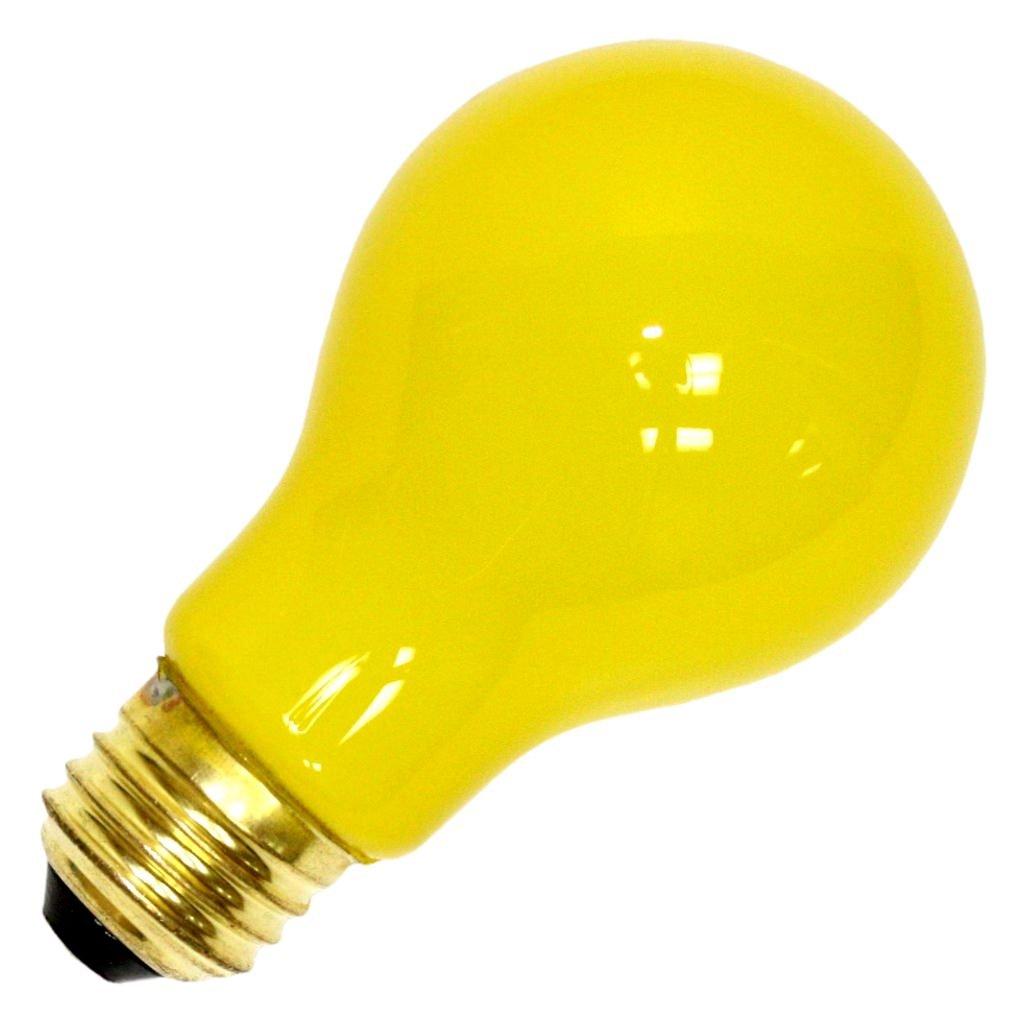 - 12 Volt Bug Light