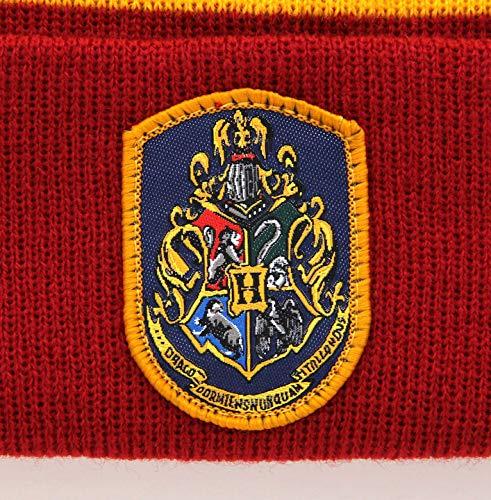 elope Warner Brothers Harry Potter Hogwarts House Gryffindor Knit Hat and Scarf Set for Adults and Kids