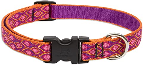 Lupine Alpen Glow Adjustable Dog Collar for Small to Medium Dogs