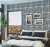 SD Stencil Grecas Clásicas, plantilla decorativa reusable para pintar con efecto papel tapiz