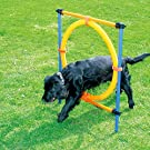 PAWISE Pet Dogs Outdoor Games Agility Exercise Training Equipment Pet Training Ajustable Height Jumping Ring
