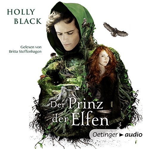 Der Prinz der Elfen audiobook cover art