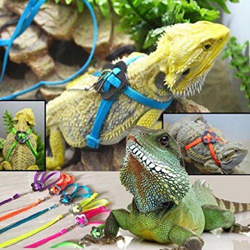 GBSELL Adjustable Reptile Lizard Harness Leash Adjustable Multicolor Light Soft Fashion (Blue)