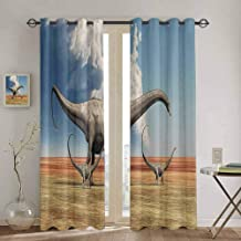 Jurassic Decor Curtains for Sliding Glass Door Mother Diplodocus Dinosaur Walks Along with Her Brood of Youngsters Clouds Window Curtain W52 x L72 Inch