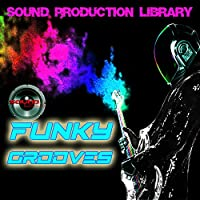 Funky Grooves - the most useful - unique original Huge WAVE/Kontakt Multi-Layer Samples/Loops Library on DVD or downoad