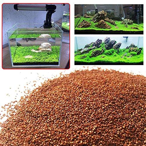 SHUNYUS Wasser Gras Moss Samen, Wasser Grassamen Wasser Wasser Mossy Samen Schnelle Keimung Für Aquarium
