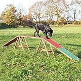 Trixie Dog Activity Agility Dogwalk, 456 x 64 x 30 cm
