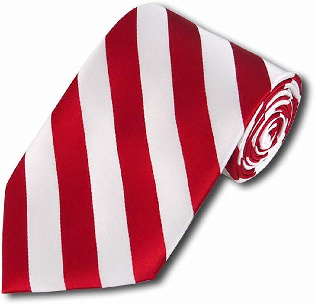 NYfashion101 Bold Representable Collegiate Striped Woven Polyester Necktie