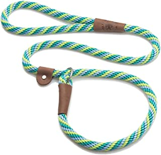 "Twist Slip Dog Leash Size: 72"", Color Seafoam"