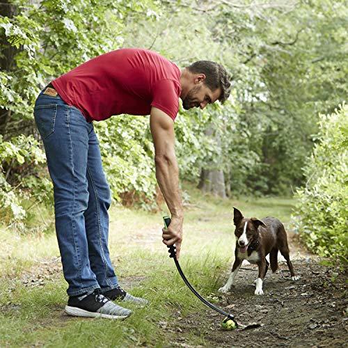 Franklin Pet Supply Dog Fetch Toy
