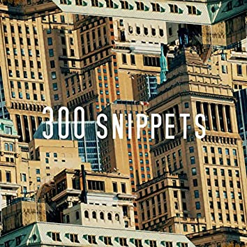 300 snippets