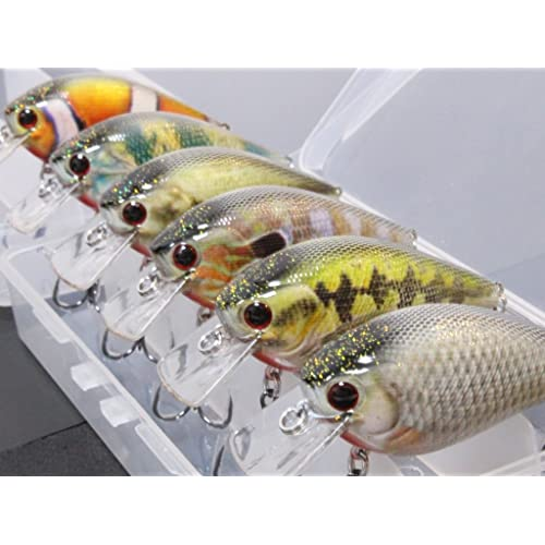 Lures for Bass: Amazon com
