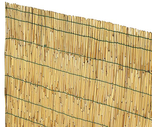 Verdelook Arella China Bamboo Peeled Reeds 1x3 m Bamboo for Fencing and Decoration