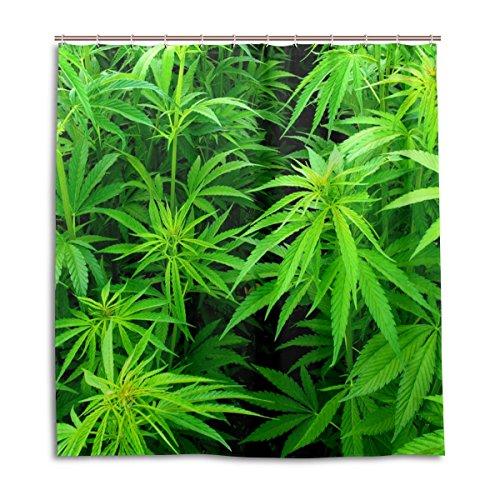 alaza Marihuana-Hanf-Blätter Duschvorhang 66 x 72 Inch, schimmelresistent und wasserdicht Polyester Dekoration Badezimmer-Vorhang