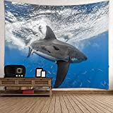 Tiburón tapiz colgante de pared,vida marina Tapiz de pared 3D...