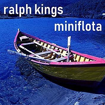 Miniflota