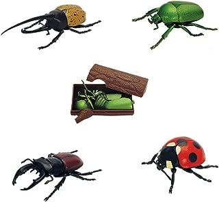 doiy beetle puzzle