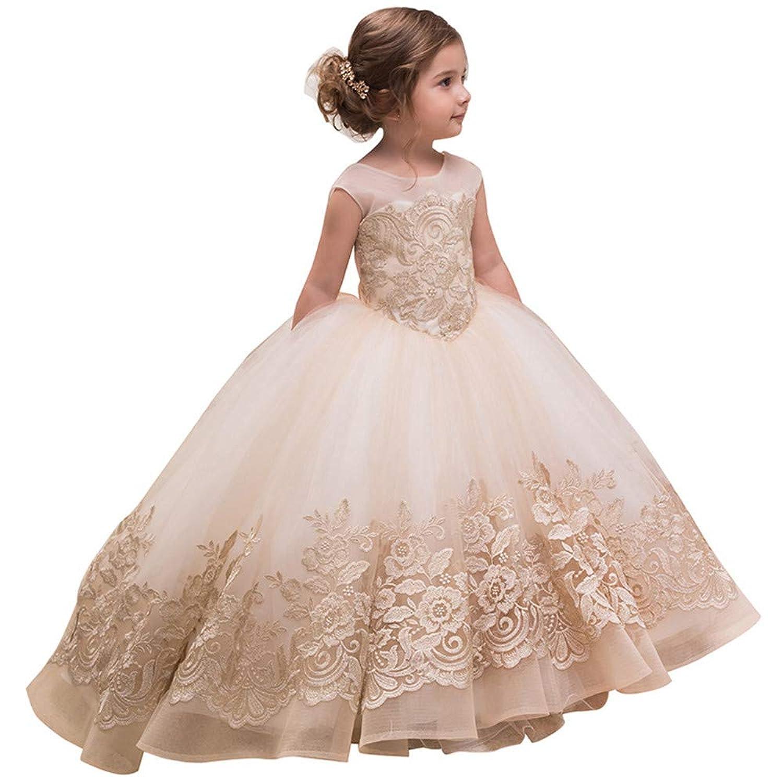 子供の女の子のドレス 女の子ノースリーブ刺繍プリンセスページェントドレス子供用ウエディングボールガウン2-13歳 女の子のパーティーウェディングブライドメイドの王女のドレス (サイズ : 4-5T)