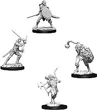 Pathfinder Battles Deep Cuts Miniatures Bundle: Elf Male Fighter & Elf Female Fighter
