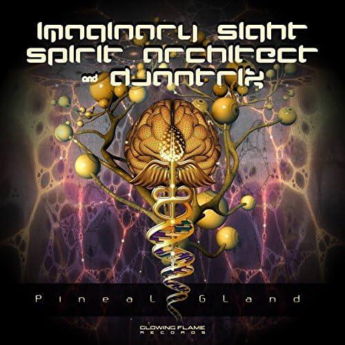 Imaginary Sight, Spirit Architect & Djantrix