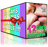12 Gays (and Lesbians) of Christmas: The Ultimate MM/FF Taboo Erotica Mega Bundle