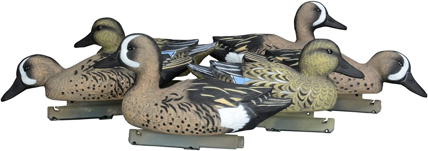 Filled Gadwall Decoys, Foam Filled