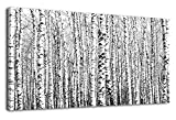 Wall Art Birch Forests Canvas Picture Nature Winter Landscape Black and White Tree Branch Modern Artwork Large Contemporary Canvas Art for Kitchen Office Wall Decor Bedroom Home Decoration 40' x 20'