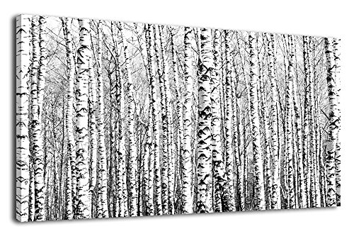 Canvas Wall Art Birch Grove Picture Nature Winter Scenery Black and White Tree Branch Modern Artwork Long Contemporary Canvas Art for Kitchen Office Wall Decor Bedroom Home Decoration 24' x 48'