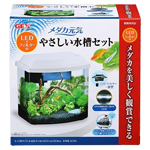 ジェックス メダカ元気 オールインワン水槽 LED+フィルター付 メダカにやさしい水槽セット