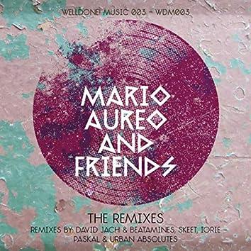 Mario Aureo & Friends - The Remixes