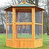 zooprimus Volière Cage à Oiseaux en Bois de Haute qualité 6 Coins 160x123cm –Modèle ''Maxi 308 XXL''